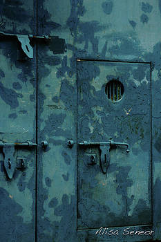 Blue Metal Door P by Alisa Seneor