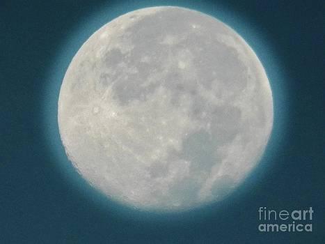 Judy Via-Wolff - Blue Moon 5