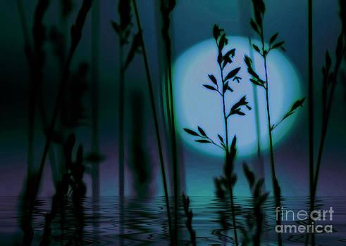 Blue Moon by Ruth Kongaika