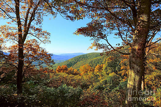 Blue Ridge in the Fall by Mark East