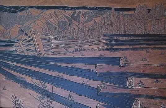 Blue Ridge Mtn. Fensing by Stan Shirk
