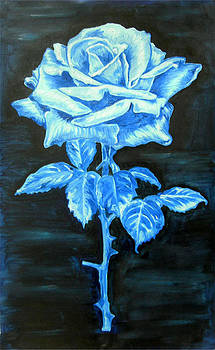 Blue Rose by Tomy Joseph