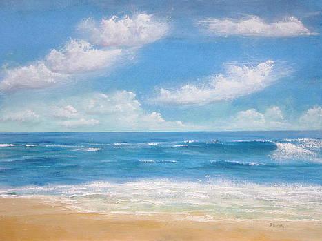 Blue Sea by Jim  Romeo