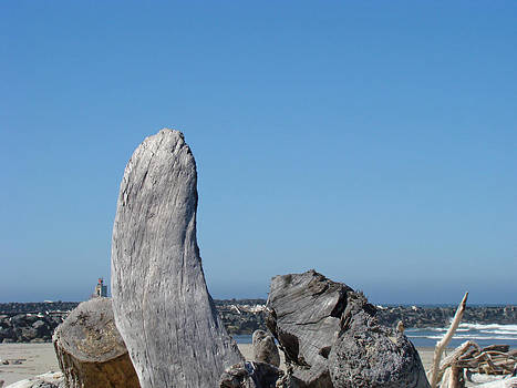 Baslee Troutman - Blue Sky Coastal Landscape Driftwood Rock Pier