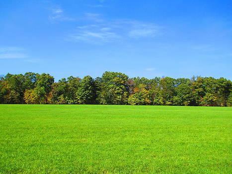 Andrew Hench - Blue Sky Field