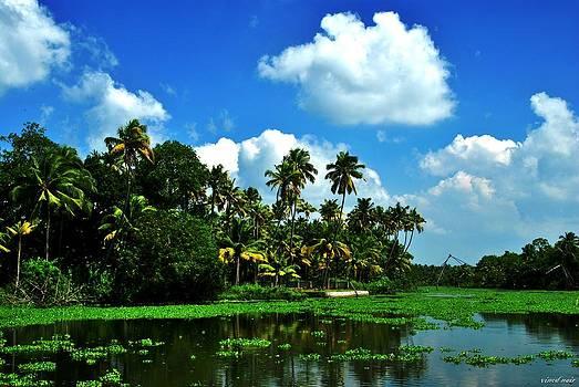 Blue Skys by Vinod Nair