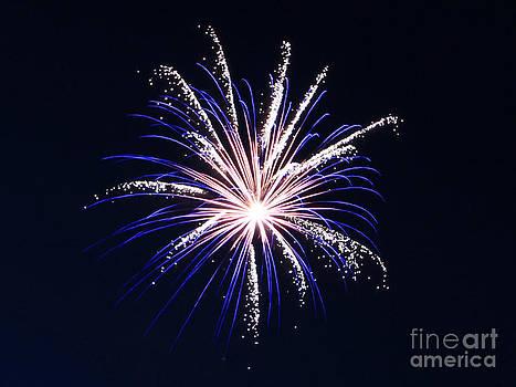 Blue Sparkle Fireworks by NaDean Ribitzki