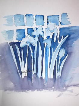Blue Study by Linda L Stinson