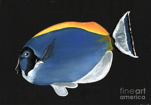 Blue Tropical Fish by Kris Sperring