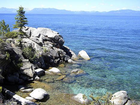 Frank Wilson - Blue Waters of Lake Tahoe
