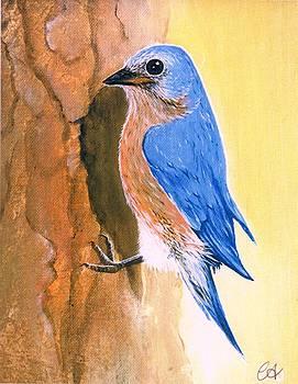 Bluebird of Happiness by Carrie Auwaerter