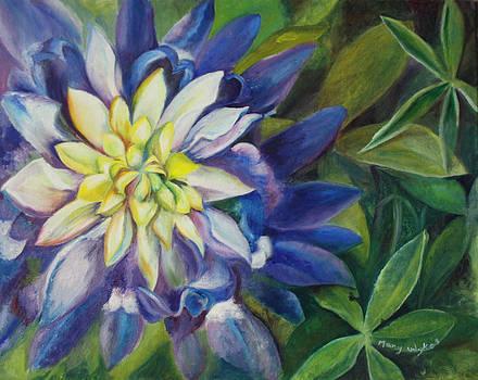 Bluebonnet Daze by Mary Beglau Wykes