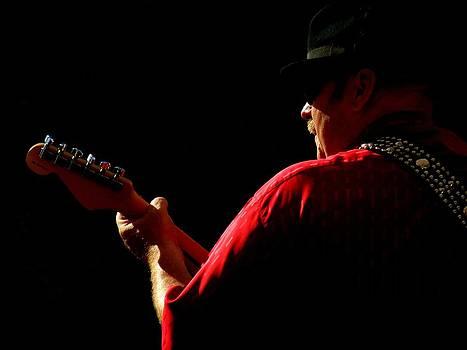 Bluesology by Artisan de l Image