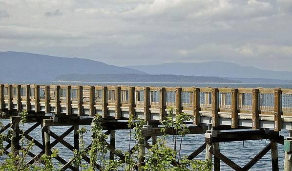 Board walk to Fairhaven by Ami Tirana