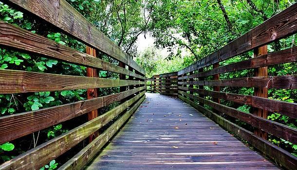 Boardwalk by Kevin Lubin