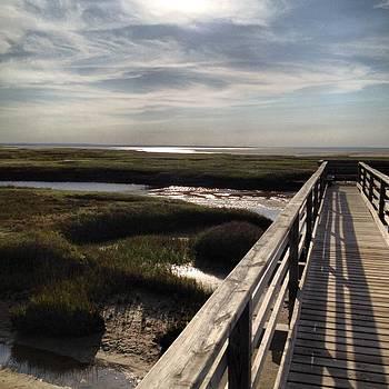 Boardwalk by Louis Sarkas