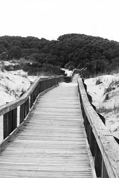 Boardwalk by Tanya Chesnell