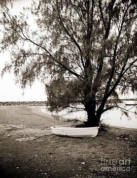 Darcy Michaelchuk - Boat Tied to Tree