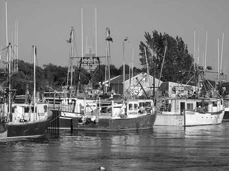 Boats at Rest by Courtney Habrial