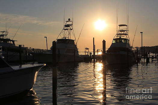 Boats in the Marina by Allison  Adams