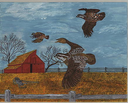 Bobwhite Quails by Tommy Combs