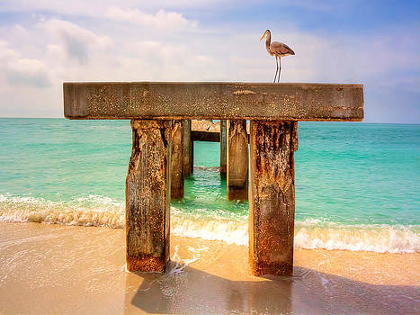 Boca Grande Bird On Broken Bridge by Jenny Ellen Photography