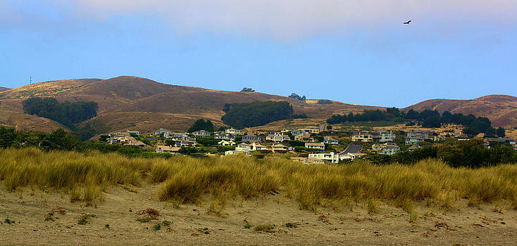 Karen Scovill - Bodega Bay