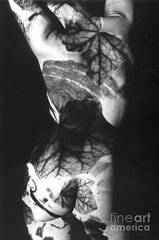 Body Projection Woman - Duplex by Silva Wischeropp