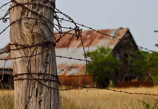 Bois D'Arc Barn by Lisa Moore