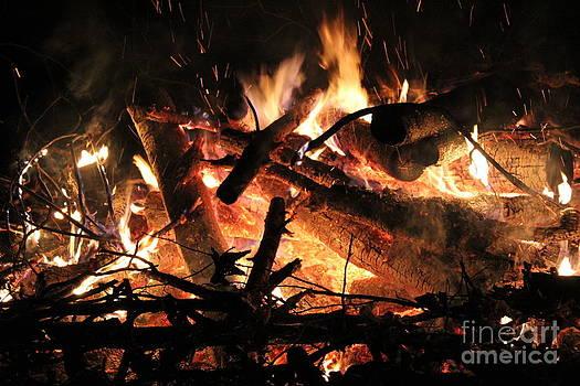Bonfire by Theresa Willingham