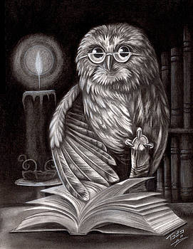 Book Owl by Todo Brennan