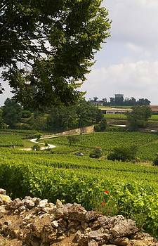 Bordeaux Terroir by Christine Burdine