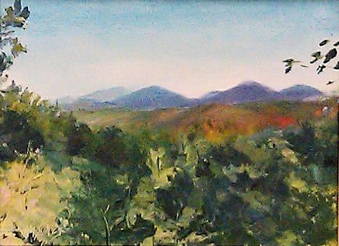 Borrowed View  by Ann Bailey