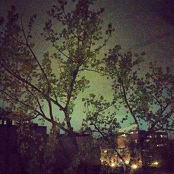 Boston Sky at Night by Linda Cordner