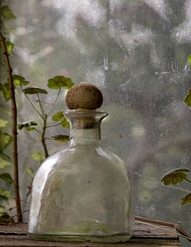 Bottle in the window by Grant Kreinberg