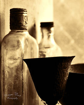 Bottles of Time by Gary  Taylor