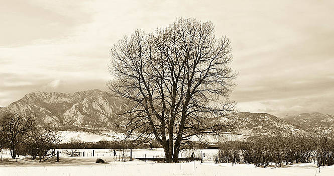 Marilyn Hunt - Boulder County