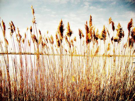 Bountiful Lake by Carol Kristensen