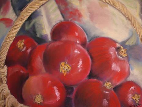 Bounty by Gitta Brewster