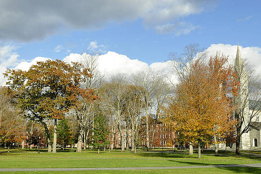 Bowdoin College Campus by Laila Valade