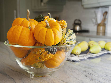 Bowl Of Gourds And Mini Pumpkins by Marlene Ford