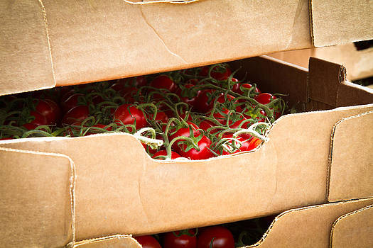 Dina Calvarese - box of vine ripe tomatoes