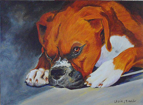 Boxer relaxing by Laura Bolle