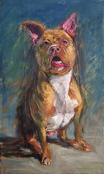 Boxer Rodriguez by Dale Knaak