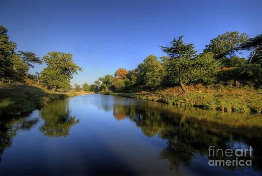 Yhun Suarez - Bradgate Park