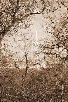 Branch It by Ama Arnesen