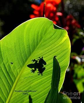 Patrick Witz - Breakfast Leaf Silhouette