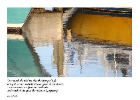 Breezy Reflections by Cynthia Vickers - Jose M Tirado