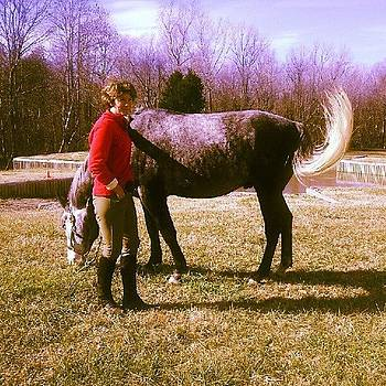 Brenda & Zeus, Long Shadow Farm, Sc by Tricia ONeill