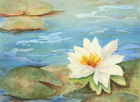 Brick Yard Pond Lily by Wendy Cunico